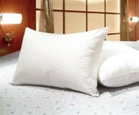 Blowout Bedding (Set Of 2)