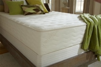 "PlushBeds 10"" Medium Botanical Bliss Latex Mattress"