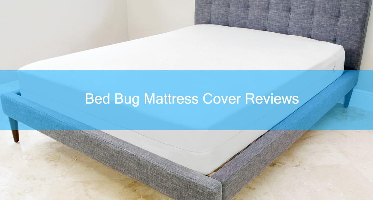 Best Bed Bug Mattress Cover Encasement Reviews 2019