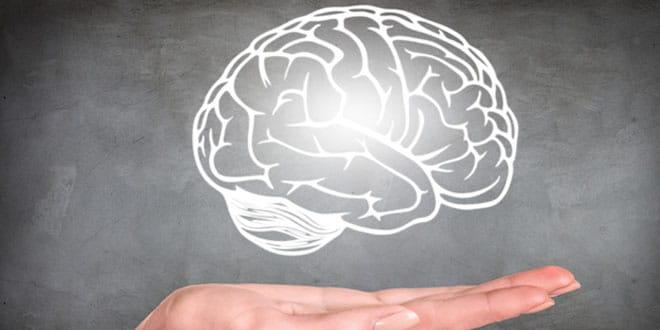 Temperature and brain